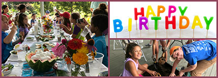 Birthday parties for the kids